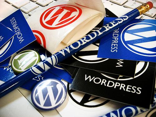 ชำแหละ wordpress